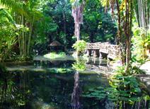 Jardín Botánico de la Amazonia Bosque Rodrigues