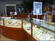 Jewelry Stores in Cozumel