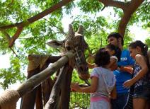 Zoológico de Culiacán