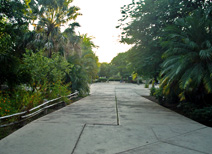 Botanical Garden in Culiacan