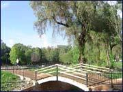 Rancho Guadiana