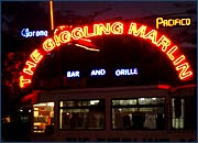 The Giggling Marlin bar in Los Cabos Mexico