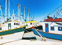 Pesca en Mazatlán