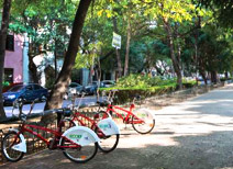 Condesa Neighborhood, Mexico City