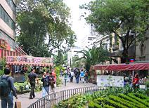Zona Rosa, Ciudad de México