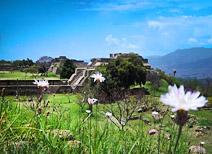 Sitios Arqueológicos Oaxaca