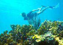 Actividades acuáticas en Punta Cana