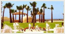 Los Cabos Travel