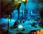 The Top 5 Cenotes to Visit during Your Summer Vacation in Tulum!