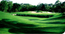 Riviera Maya Golf Courses