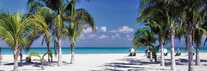 Isla Mujeres Nightlife   BestDay