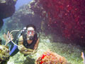 Explore Underwater Wonders in Cancun
