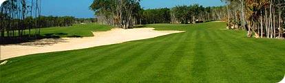 Campo Golf Campo Golf Camaleon Mayakoba Cancún