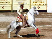 Charro and Andalusian
