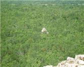 Coba: A Legacy of the Mayan Empire
