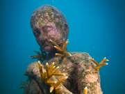 Snorkeling and diving Cancun's underwater museum