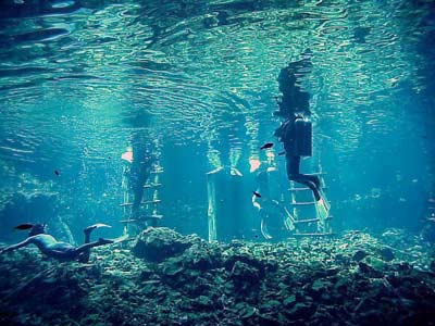 Cenotes: Sacred Paradises