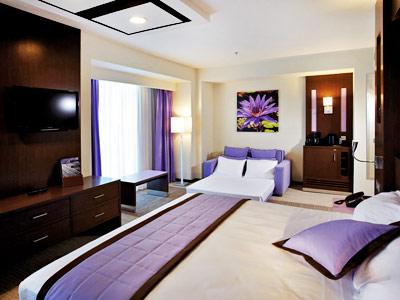 Hotel riu plaza guadalajara for Habitacion familiar riu bambu