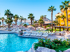 san jose del cabo chat rooms There are 8 pet friendly hotels and resorts in san jose del cabo, mx need help deciding where to stay view pictures of each dog friendly hotel, get the scoop on.