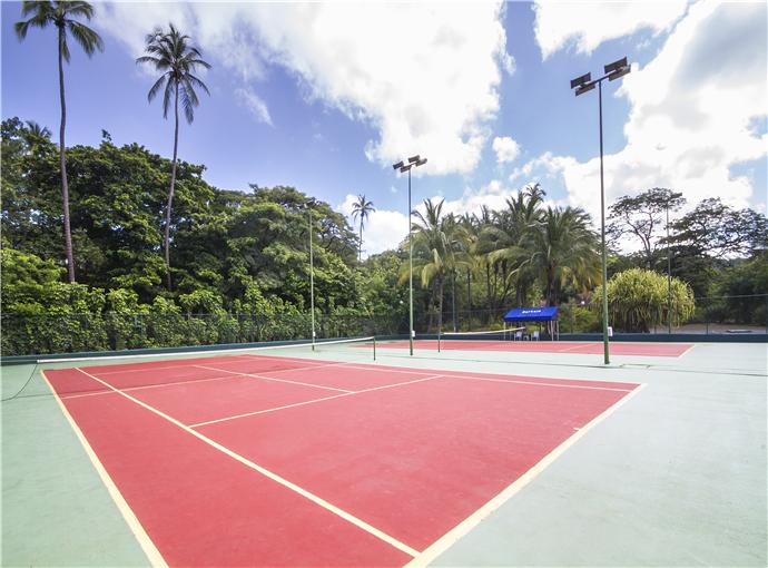 Cancha (s) de Tenis Barceló Montelimar