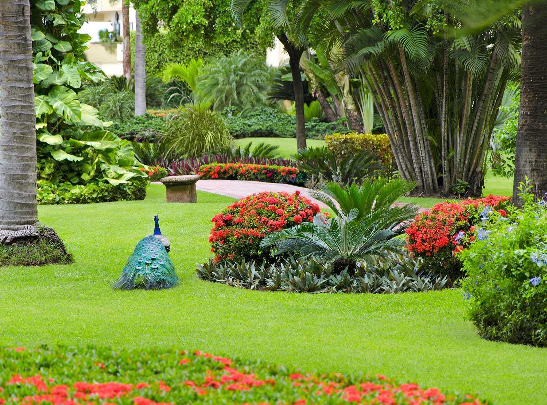 velas vallarta family beach resort premium all inclusive puerto vallarta hotels