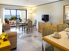 Suite with Terrace + Free WiFi
