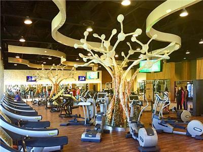 Fitness Center Barcelo Maya Caribe