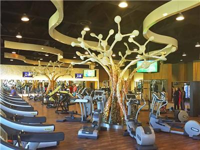 Fitness Center Barcelo Maya Palace