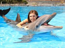 Dolphin Encounter Cabo Dolphins Tour