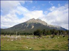 Tierra del Fuego National Park Tour