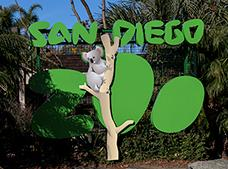 Tour San Diego Zoo