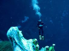 Snorkeling and Diving Eco-Adventure Tour