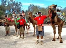 Tour Camel Quest