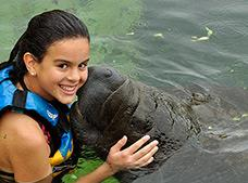 Manatee Encounter Cozumel Tour