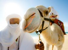 Outback and Camel Safari Tour