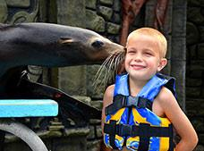Tour Sea Lion Discovery  Dolphin Discovery Cozumel