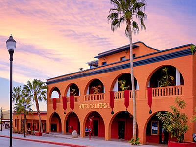 The Magic of Todos Santos