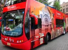 Turibus Historic Center, Basilica, Polanco and South Zone Tour