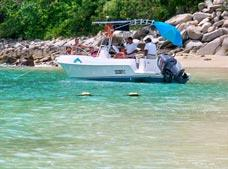 Premium Bay Tour with Snorkeling