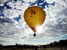 Hot Air Balloon Ride with Animal Kingdom Tour