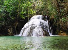 Waterfalls| Coffee and Adventure Tour ¡PROMOTION!