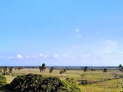 doral costa Apartamento, 3 hab y 2 baños, 1524 sq ft, ubicado en costa del sol disponible para renta más info.